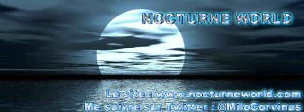 Bannière Facebook NocturneWorld
